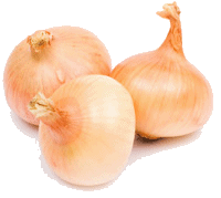 Yellow onion price per pound